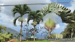 trinidadandtobago3